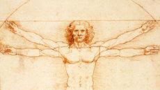 Leonardo Vitruvian Human Person