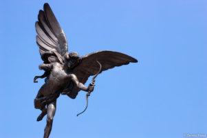 Periagoge: Liberal Education In The Modern University